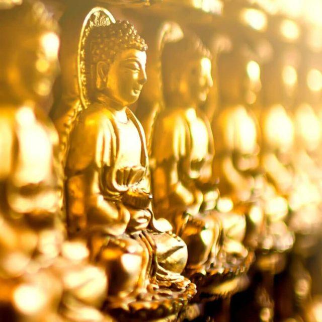 Fornation Bouddhisme Paris